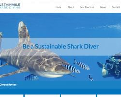 sustainable sharkdiving